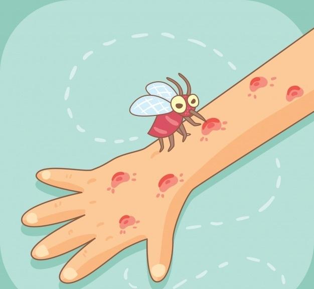 Cách xử lý vết côn trùng cắn ở trẻ