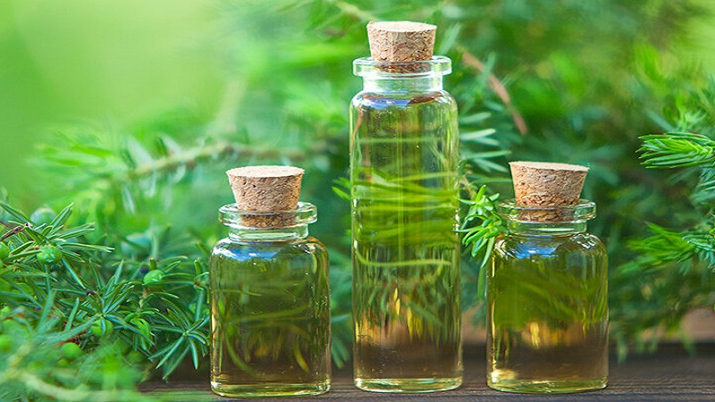 Các loại tinh dầu được chiết xuất có trong nước tắm thảo dược Diệp An Nhi