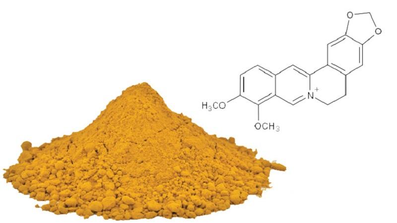 Công nghệ Nano berberin trong sản phẩm nước tắm thảo dược Diệp An Nhi